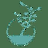 Magali Tempère, Naturopathe - Logo